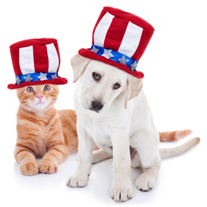 July 4th Pet Safety Tips!